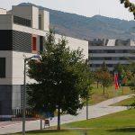 100 % de negativos tras las pruebas realizadas en el campamento del Ayuntamiento del Valle de Egüés