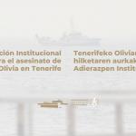 Declaración Institucional contra el asesinato de Olivia en Tenerife